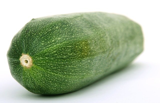 a closeup of a cucumber as the cat would see from their point of view