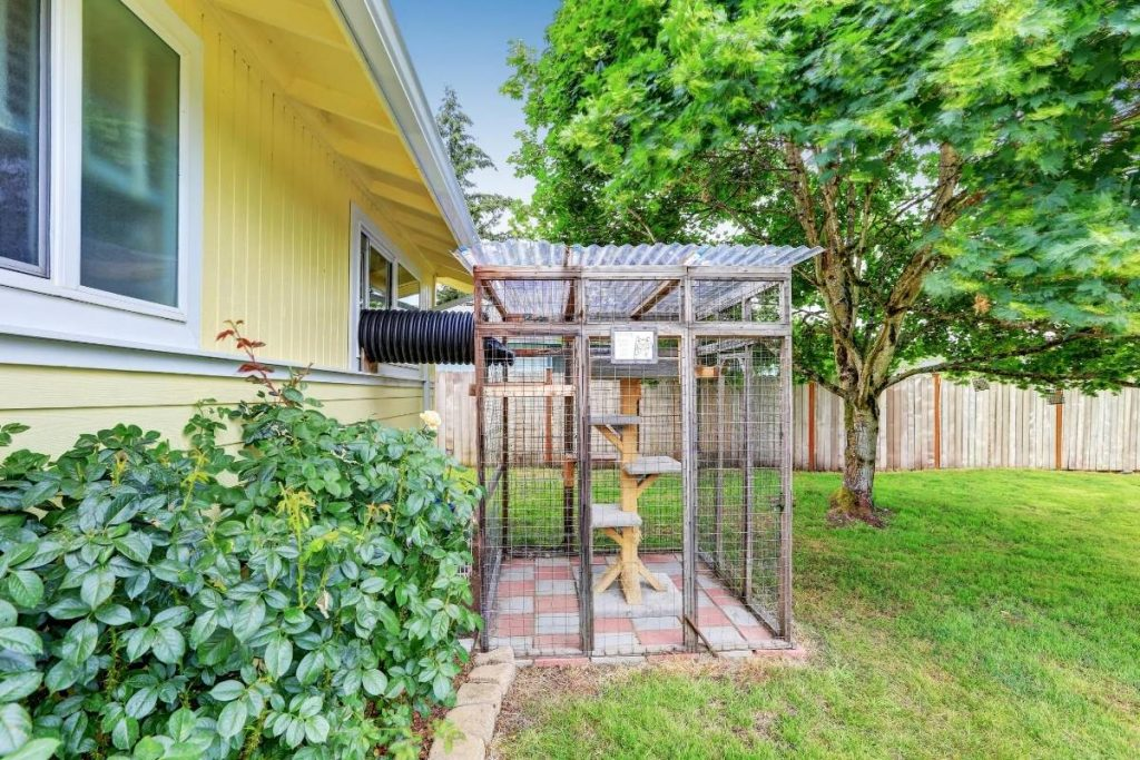 outdoor cat cage attached to a house